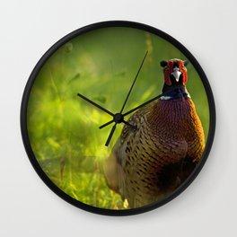 Mr Spring Wall Clock