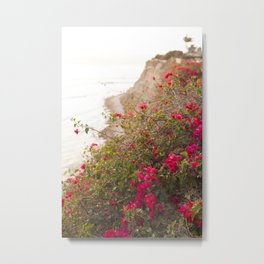 Seaside Bougainvillea Metal Print