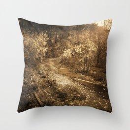 Road to memories Throw Pillow