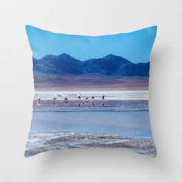 Flamingoes in the Atacama Desert, Bolivia Throw Pillow