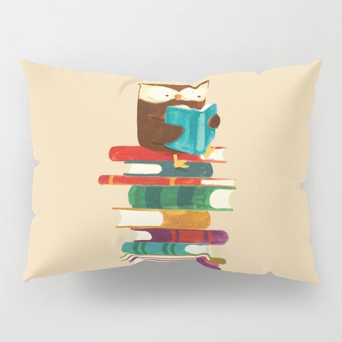 Owl Reading Rainbow Pillow Sham