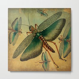 Vintage Grasshopper Metal Print