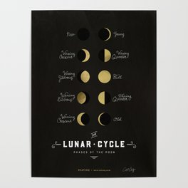 The Lunar Cycle • Phases of the Moon – Black & Gold Palette Poster