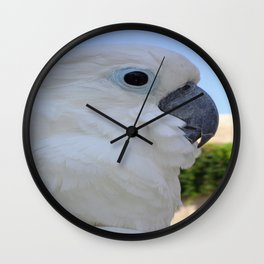 Side Portrait Of A Blue-Eyed Cockatoo Wall Clock