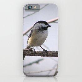 Dee-Dee-Dee iPhone Case