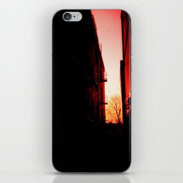 Warmth in Cold Places iPhone Skin
