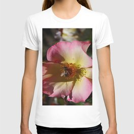 Beauty And Bee T-shirt