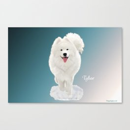 Tybor in Snow Canvas Print