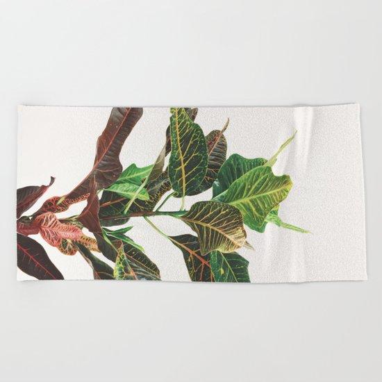 Croton Beach Towel