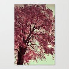 Autumn Blood Canvas Print