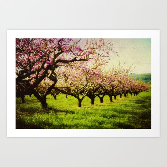 Orchard play Art Print