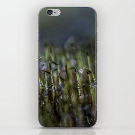 morning gathering iPhone Skin