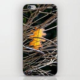 Golden Leaf iPhone Skin