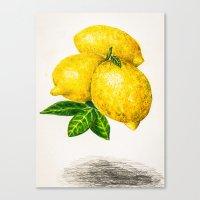 lemon Canvas Prints featuring Lemon by Peiting Tsai
