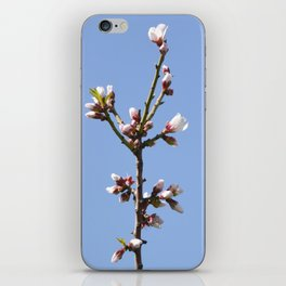 Blossom Branch iPhone Skin