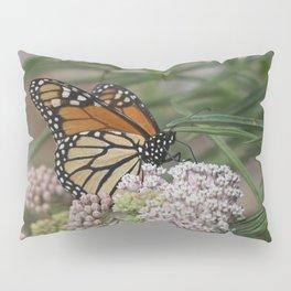 Majestic Monarch Pillow Sham