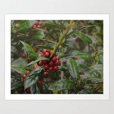Holly-luia Art Print