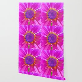Neon Pink Daisy Wallpaper