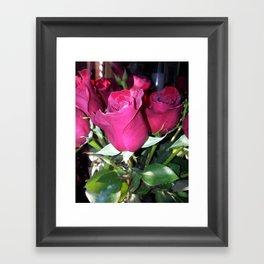 Red Roses for Love Framed Art Print