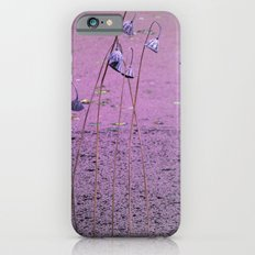 pink pond Slim Case iPhone 6s