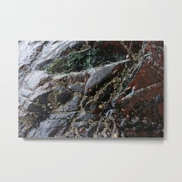 Ocean Weathered Natural Rock Texture with Barnacles Metal Print