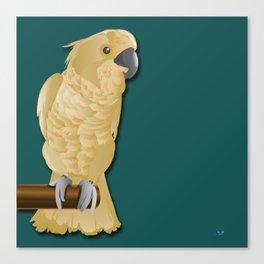 Ivory the Bird Canvas Print