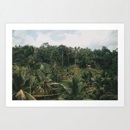 Bali Tegalalang Art Print