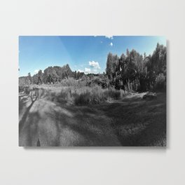 The Blue & The Gray Metal Print