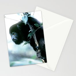 Howler Monkey in Costa Rica Stationery Cards