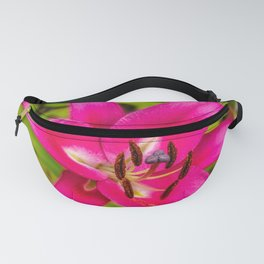 Acapulco Lily Fanny Pack