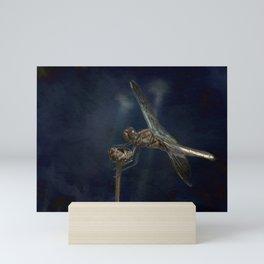 Female Widow Skimmer at Delta Pond, No. 1 Painterly Mini Art Print