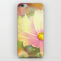 cosmos iPhone & iPod Skins featuring Cosmos by V. Sanderson / Chickens in the Trees