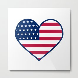 I love USA Metal Print