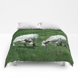 Quadruplicates Comforters