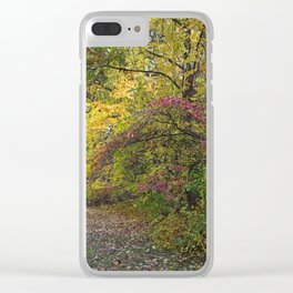 Go Your Own Way Clear iPhone Case