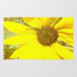 sunflower beauty  Rug