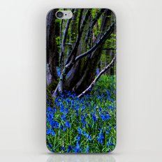 BLUE GLADE iPhone & iPod Skin