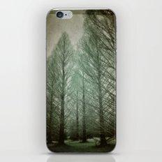 winter dream iPhone & iPod Skin