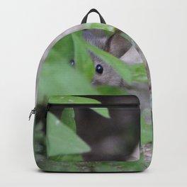 Peek-A-Boo, Mousie Backpack