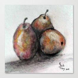 Three of Pears Canvas Print