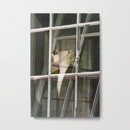 Look through any window Metal Print