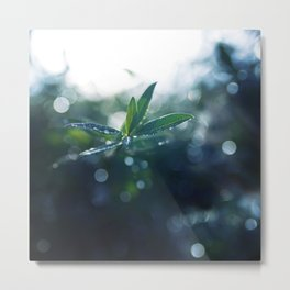 Shining in the Dark. Metal Print
