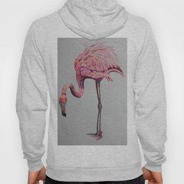 Pink Flamingo Hoody