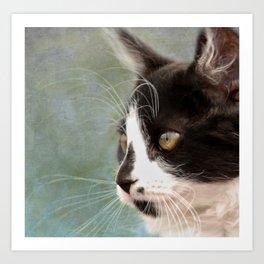 The Ships Cat Art Print