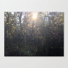 """Alien Sun and Jungle"".  Nature Series #4 Canvas Print"