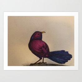 Fuchsia Bird Art Print