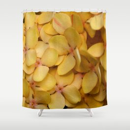 Flame of the Woods Shower Curtain
