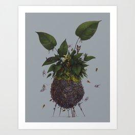 Lauraceae Art Print