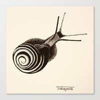 snail Canvas Prints featuring  Snail. by Assiyam