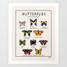 Butterflies of the Rainforest Art Print